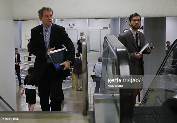 S Sen Sherrod Brown is seen March 16 2016 on Capitol Hill in Washington DC President Barack Obama has nominated Chief Judge Merrick Garland of the...