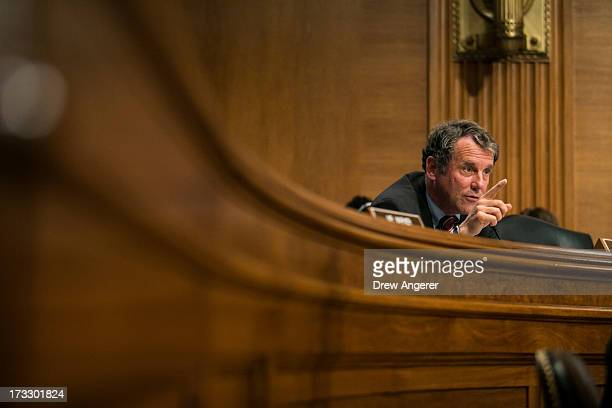 S Sen Sherrod Brown questions witnesses during a Senate Banking Housing and Urban Affairs Committee hearing on 'Mitigating Systemic Risk Through Wall...