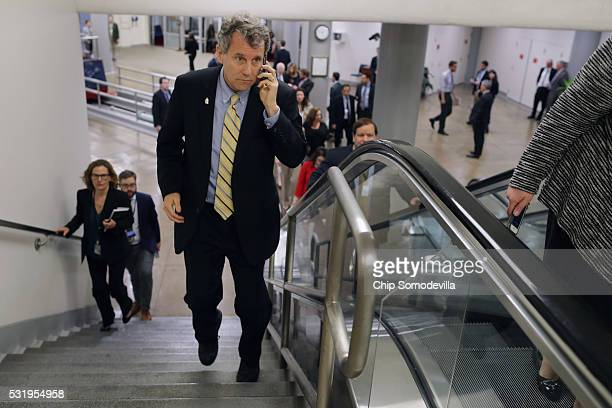 Sen Sherrod Brown talks on his mobile phone while heading to the weekly Senate Democratic policy luncheon at the US Capitol May 17 2016 in Washington...