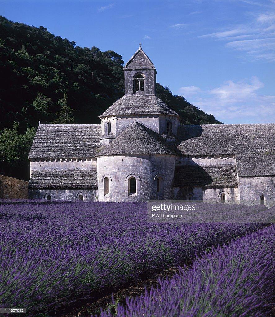 Senanque Abbey, Gordes, Vaucluse, Provence, France : Stock Photo