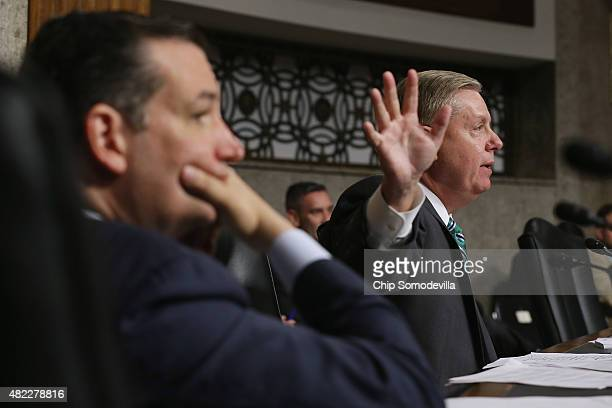Senate Armed Services Committee memebrs and Republican presidential candidates Sen Ted Cruz and Sen Lindsey Graham question witnesses during a...