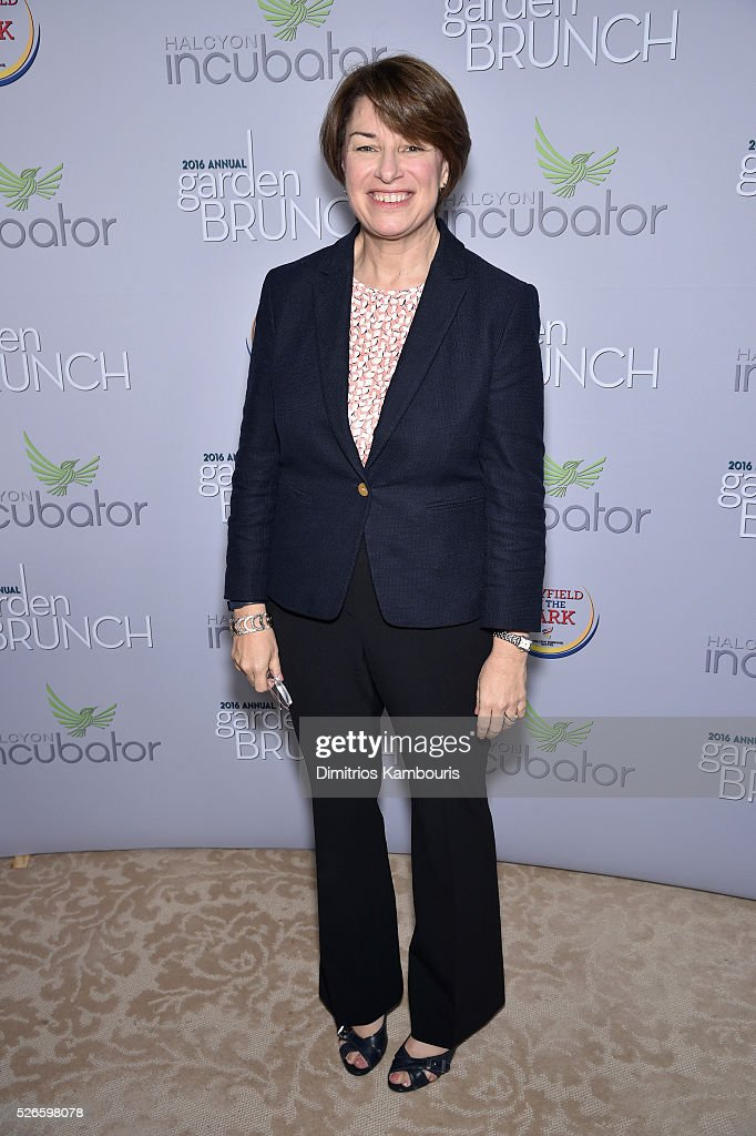 Senator <a gi-track='captionPersonalityLinkClicked' href=/galleries/search?phrase=Amy+Klobuchar&family=editorial&specificpeople=3959717 ng-click='$event.stopPropagation()'>Amy Klobuchar</a> attends the Garden Brunch prior to the 102nd White House Correspondents' Association Dinner at the Beall-Washington House on April 30, 2016 in Washington, DC.
