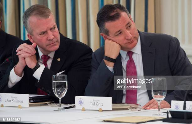 US Senator Ted Cruz Republican of Texas and US Senator Dan Sullivan Republican of Alaska listen as US President Donald Trump speaks during a meeting...