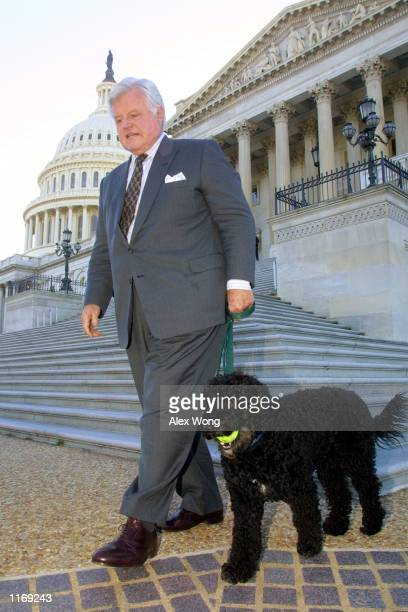 Senator Ted Kennedy walks with his dog Splash prior to a press briefing on a suspicious anthrax mail that was sent to his Boston office which later...