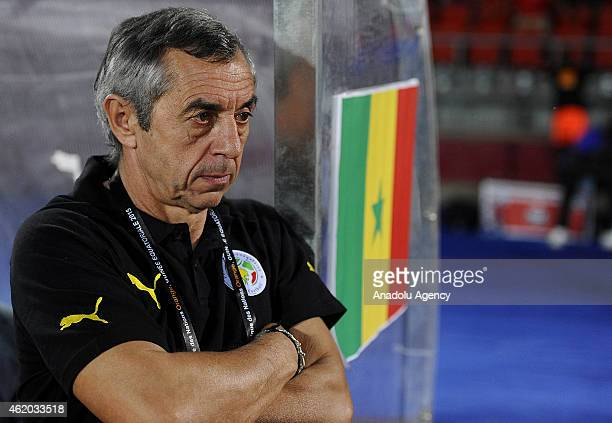 Senegal's head coach Alain Giresse during the 2015 African Cup of Nations Group C football match between South Africa and Senegal at Mongomo Stadium...