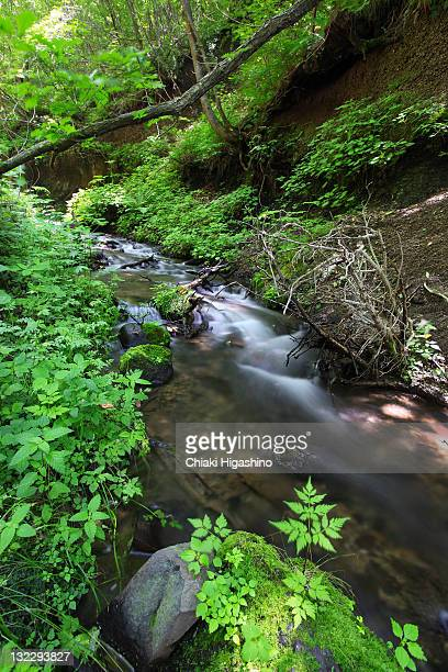 Sengataki waterfalls of Nagano