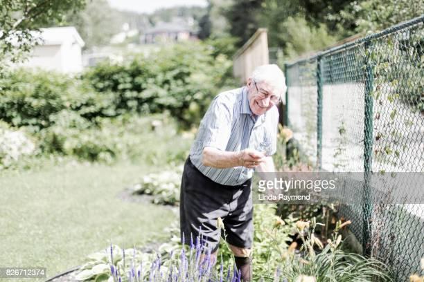 Senior Adult Man Doing Yardwork