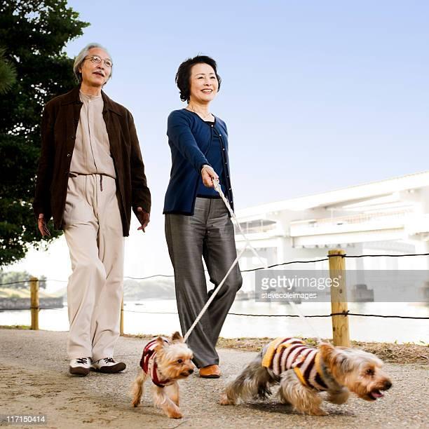 Senior Asian Couple Walking Their Dogs