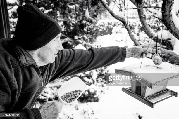 Senior citizen feeding birds in the winter