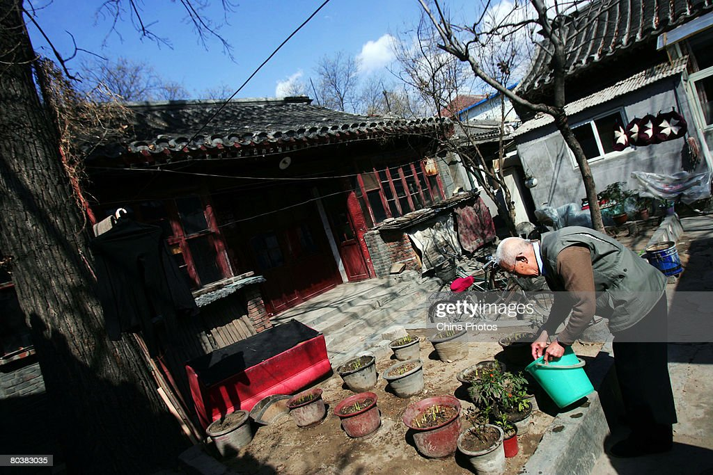 A senior citizen waters flowers in a Hutong on March 25 2008 in Beijing China Traditional Hutong alleyways are symbols of old Beijing which despite...