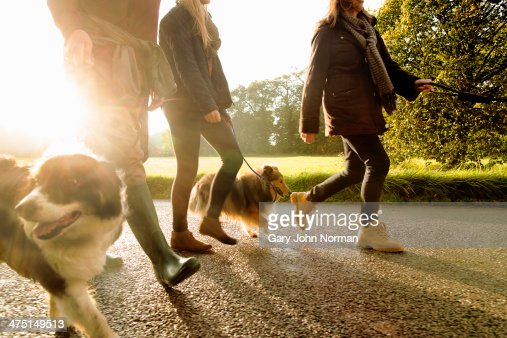Senior couple and granddaughter walking dogs, Norfolk, UK