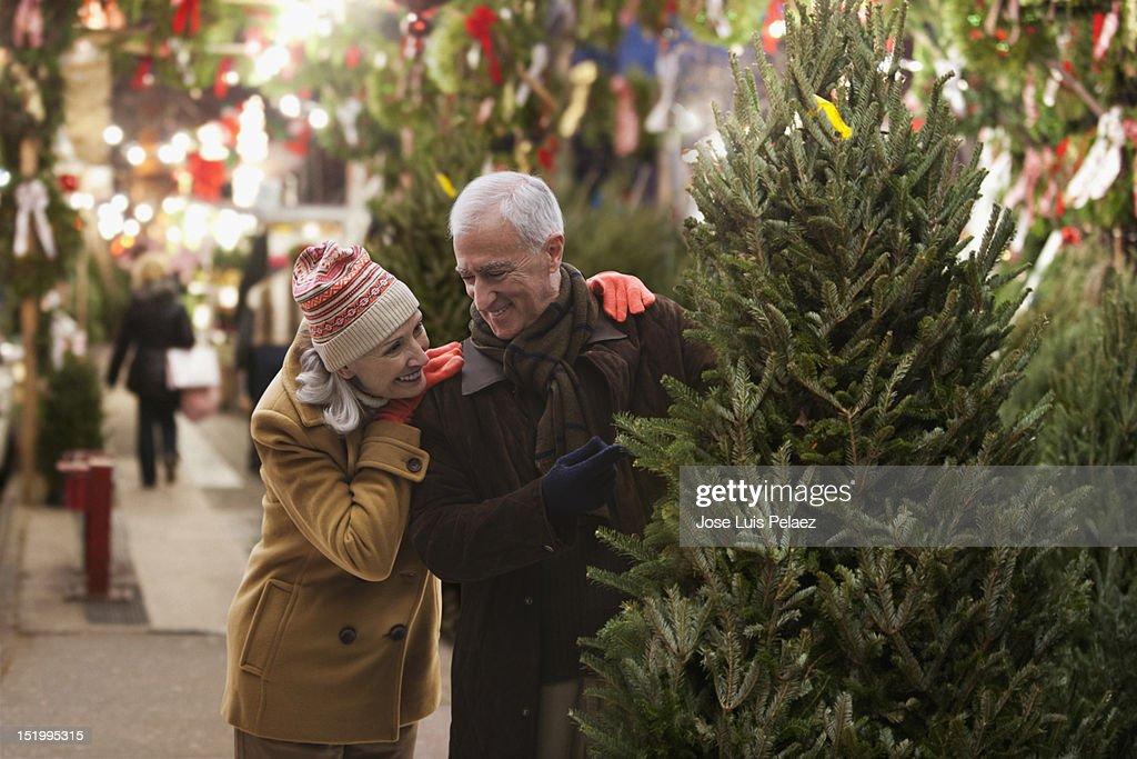 Senior couple choosing Christmas tree : Stock Photo