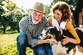 A close-up of a joyful senior couple crouching and petting a dog.