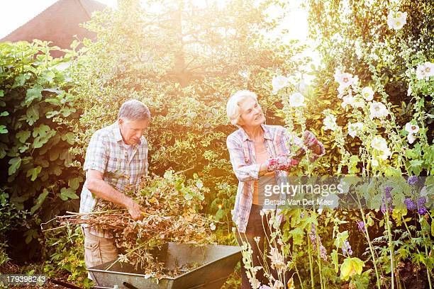 Senior couple gardening.