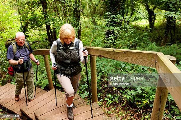 年配のカップルのハイキングの田園地帯