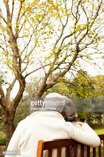 Senior couple in the park : Stock Photo