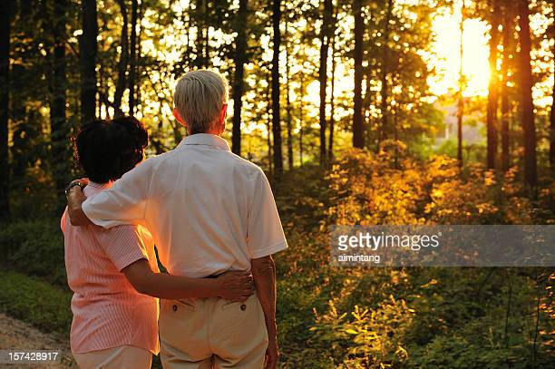 Senior Couple Looking at Sunset