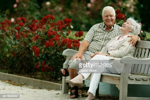 A Senior Couple Sitting on a Park Bench Next to Rose Bushes : Stock Photo