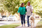 Senior Couple Walking Dog Along Suburban Street