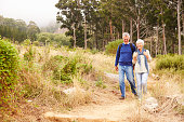 Senior couple walking in a forest towards the camera