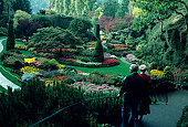 Senior couple walking in Butchart Gardens in Victoria, British Columbia, Canada, elevated view