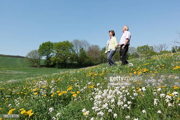 Altes Paar walking auf blühenden Wiese (XXXL
