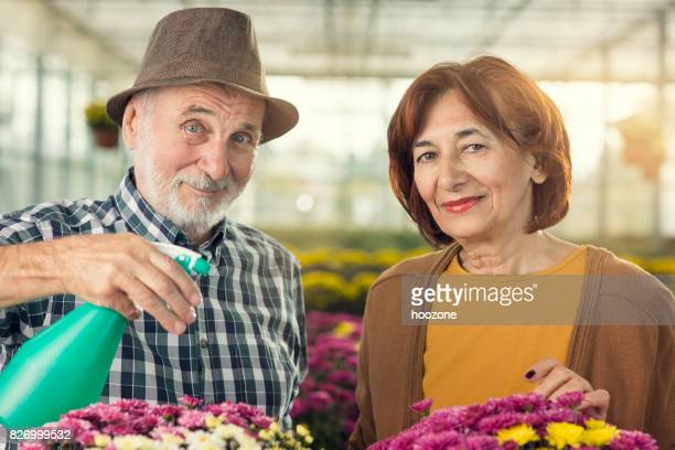Senior couple watering plants together at greenhouse
