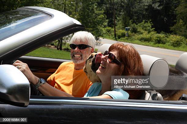 Senior couple with dog in convertible car