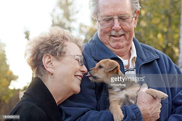 Casal Idoso com novo cachorrinho