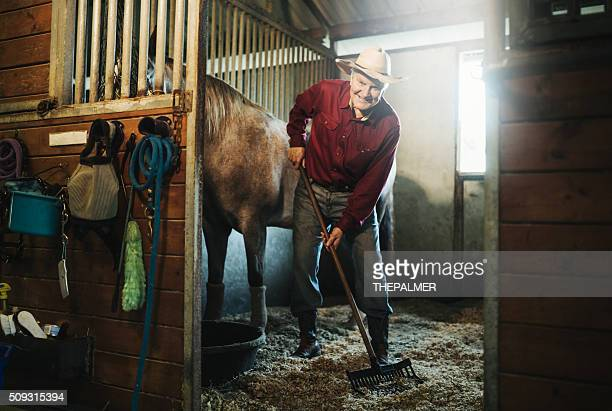 Senior cowboy cleaning the stable