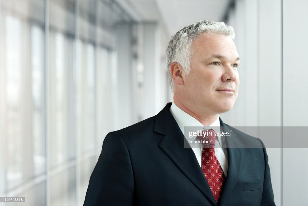 Senior Executive  Businessman : Stock Photo