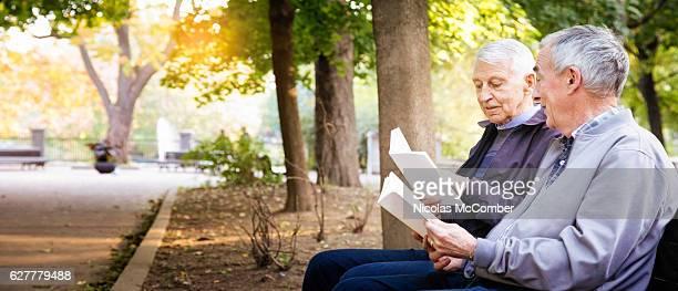 Senior gay male couple enjoying reading books in park panorama
