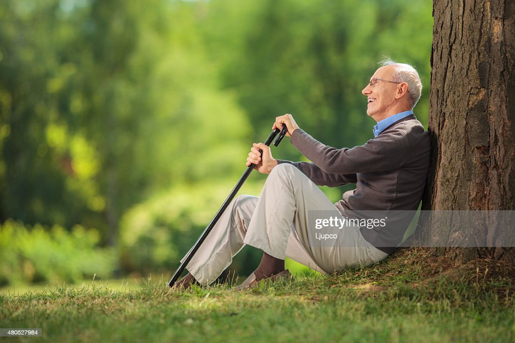 Senior gentleman sitting by a tree in a park : Stock Photo