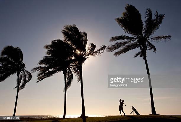 Ältere Golfer in den Tropen