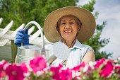 Senior Hispanic woman watering flowers