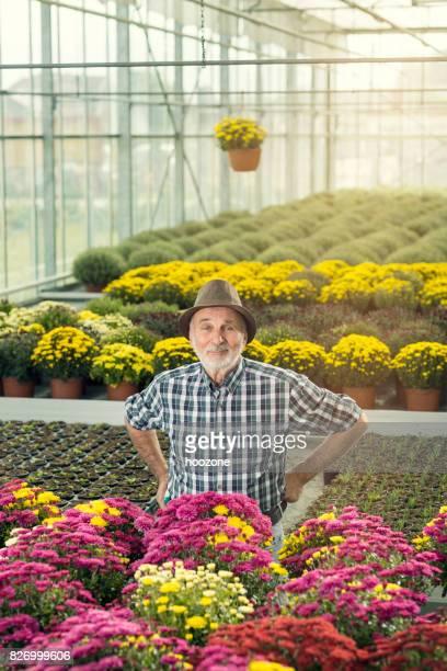 Senior male florist working at garden center