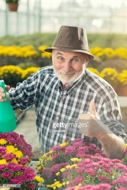 Senior male florist working at greenhouse and showing thumbs up