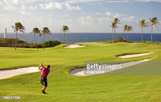 Senior Male Golfer on Tropical Golf Course in Hawaii