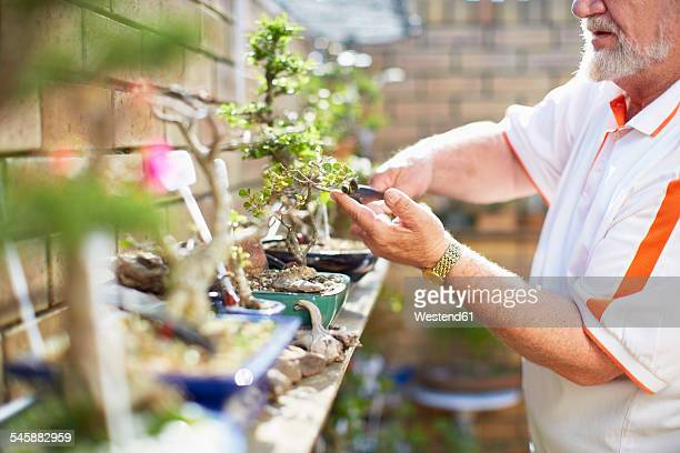 Senior man caring for plants