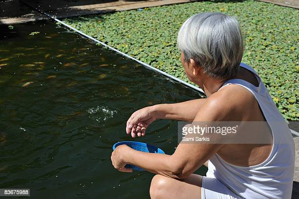 Senior Man (70) feeding fish in garden's bassin