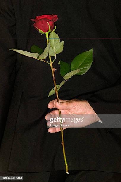 Senior man holding a red rose