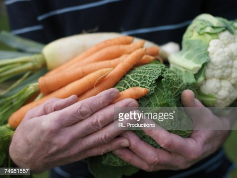 Senior man holding vegetables, close-up : Stock Photo