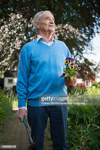 Senior man in garden holding pansy plant whilst looking up