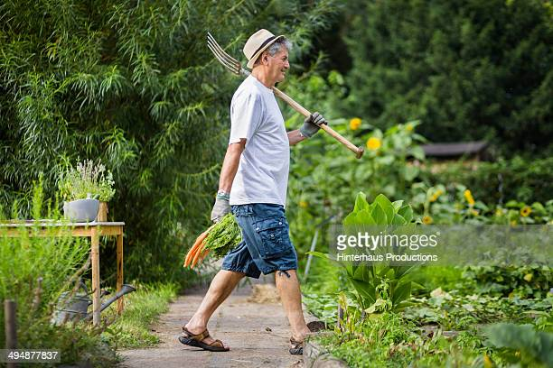 Senior Man In His Garden