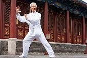 Senior Man Practicing Tai Chi, Temple of Heaven