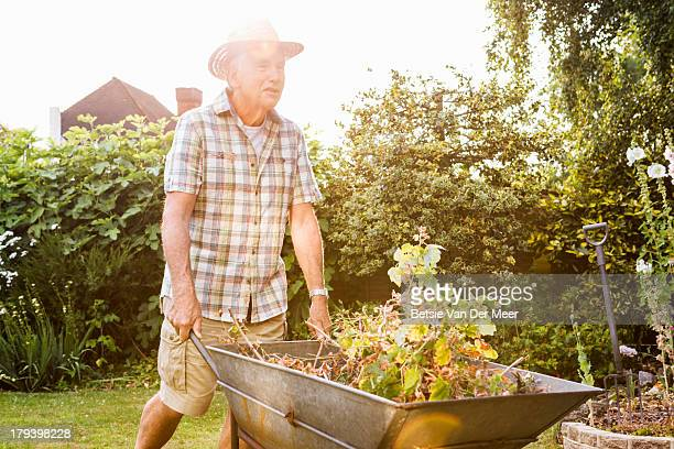 Senior man pushing wheelbarrow in garden.