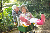 Cheerful senior man pushing wife sitting on wheelbarrow in garden
