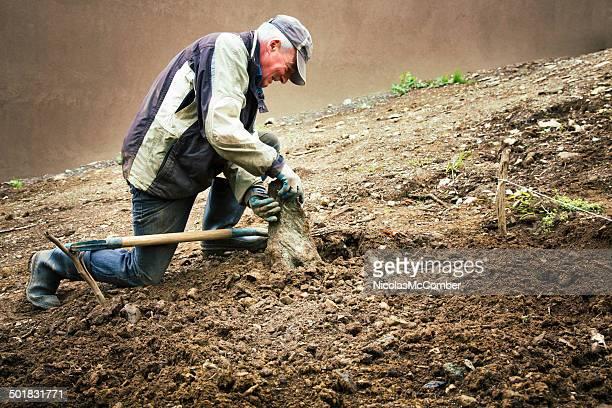 Senior homme enlever rocks de l'avenir sur le jardin
