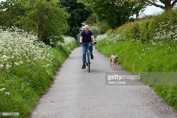 Senior man riding bike on country lane with dog