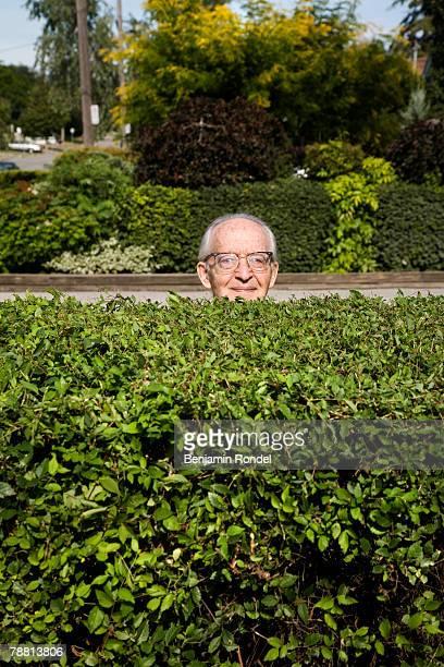 Senior Man Standing Behind Hedge